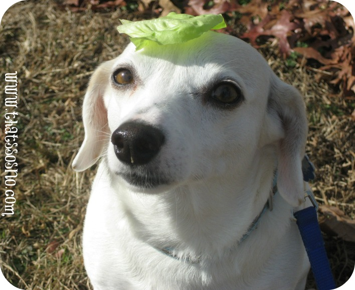 Lil Sno in her signature lettuce leaf hat.